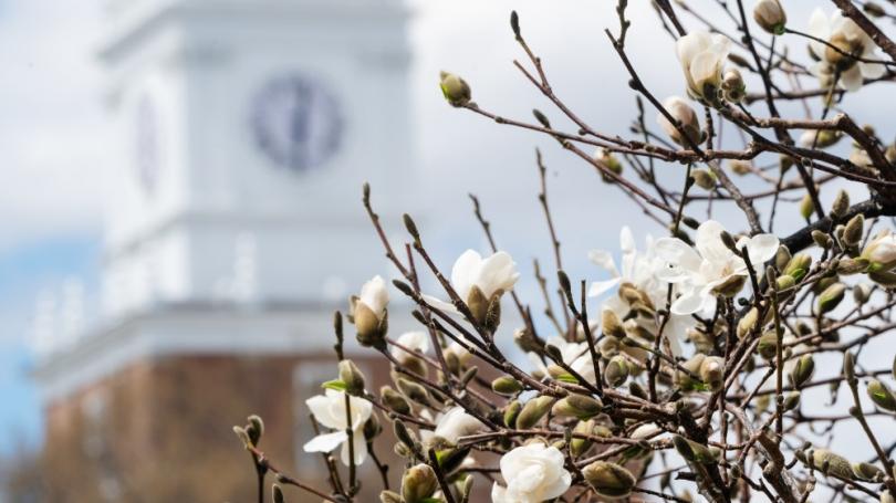 Dartmouth Campus, Spring 2020
